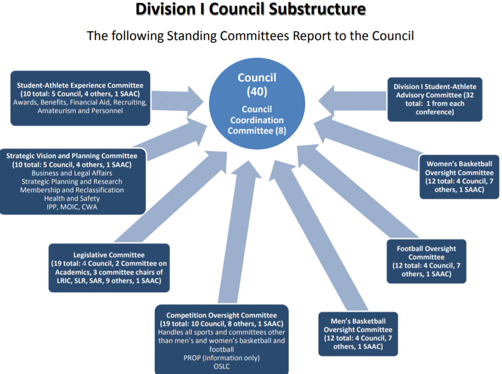 Division 1 Council Committee.png
